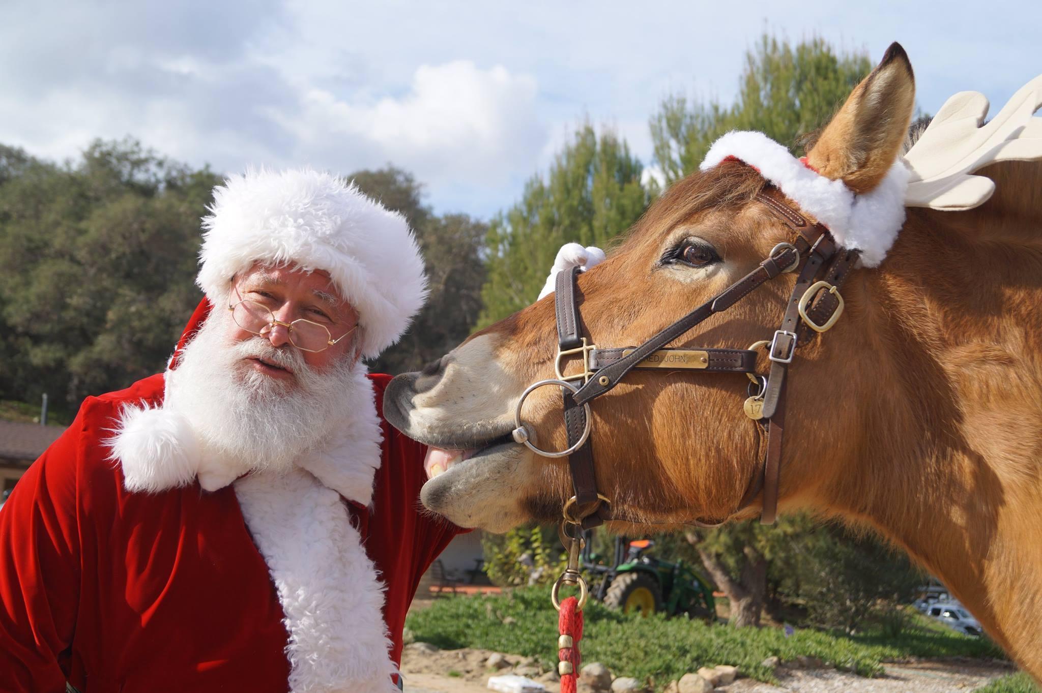 Santa and Konah